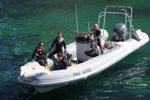 Séminaire snorkeling