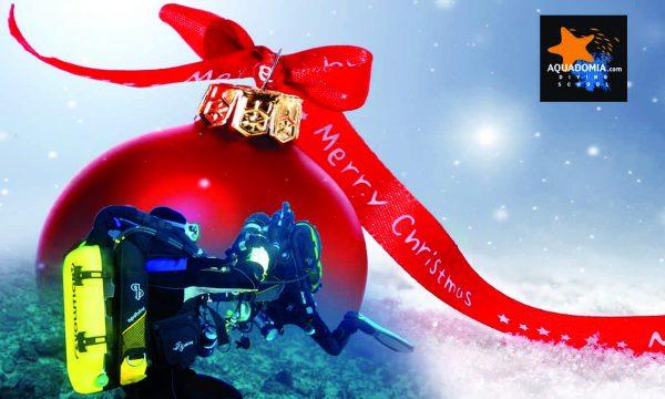 cadeau plongée aventure