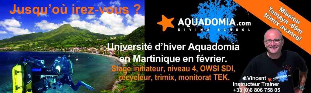 Martinique février