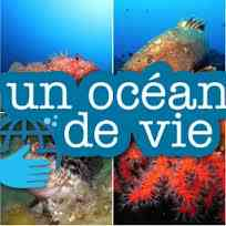 UnOceandevie