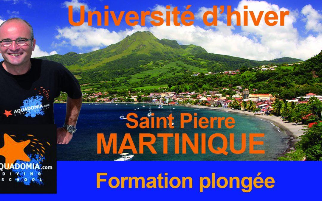 Formation Martinique plongeur niveau 1 2 3 4 initiateur Divemaster Épave Tortue TEK Février/Mars