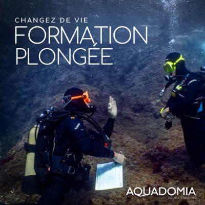 Devenir guide plongée Divemaster, Formation changer de vie pour débutant