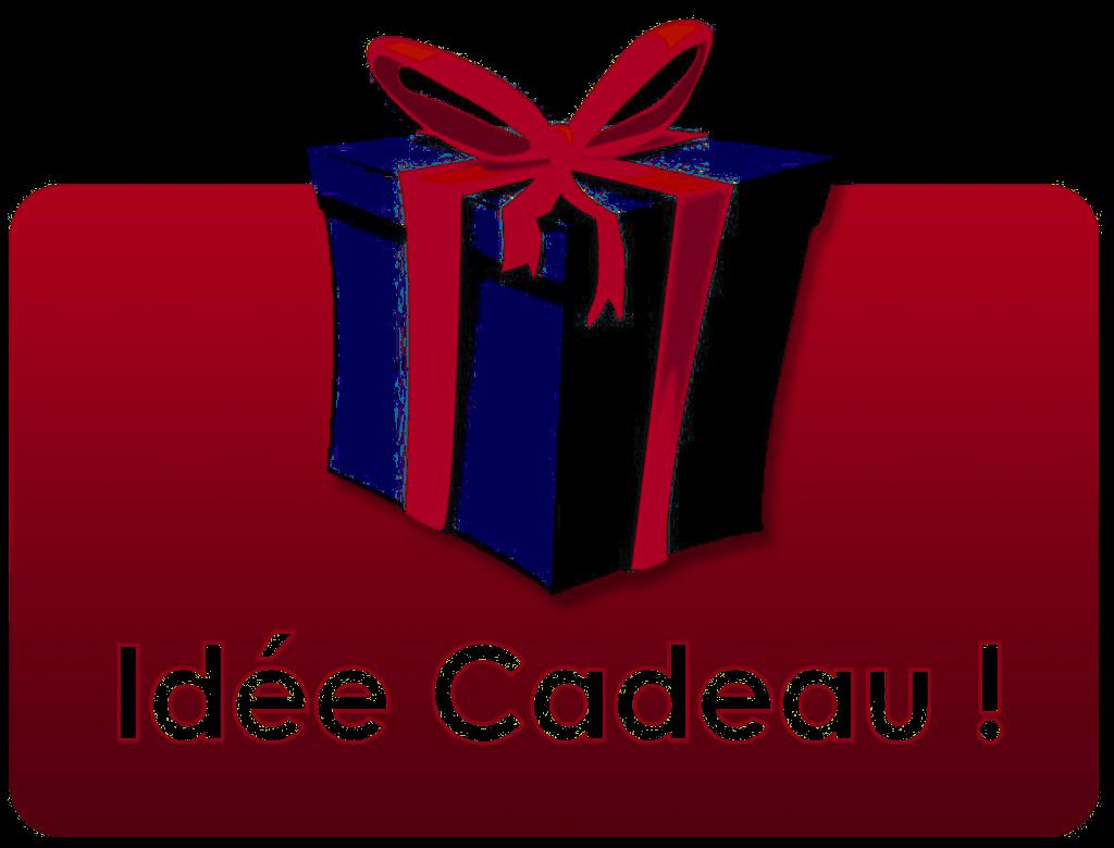 Idée cadeau plongée